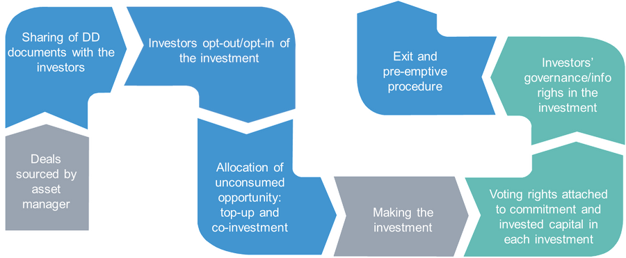 Chart: the investment and divestment process of a pledge fund